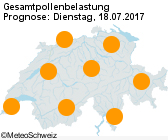 Pollenflug Morgen