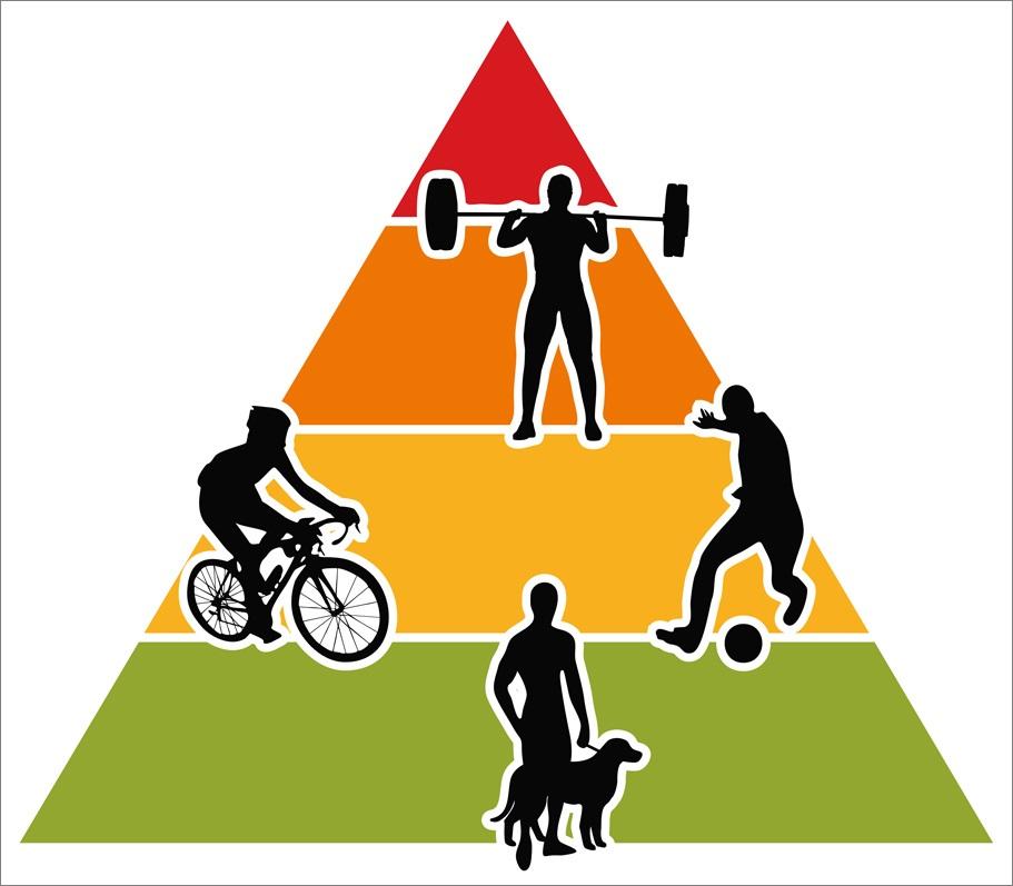 Viel leichte Bewegung über den Alltag verteilt ist genauso wichtig wie intensives Training.