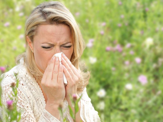 teaserbox_pollenprognose.jpg